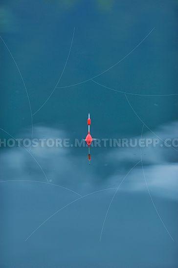Schwimmer im Fischerteich