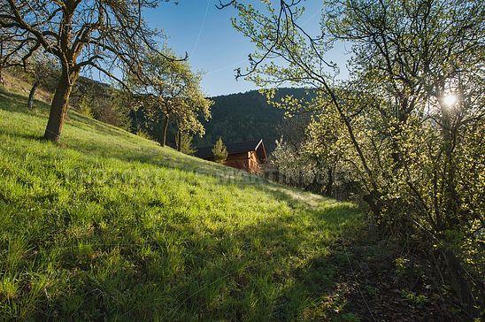 Bauernhof am Weingartbühel in Aicha
