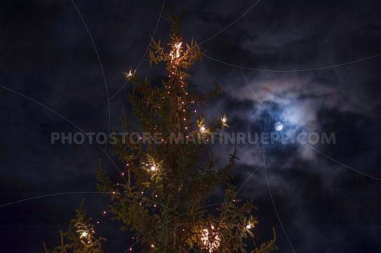 Weihnachtsbaum und Mond