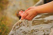 Am Wassertrog