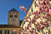 Im Kloster Neustift