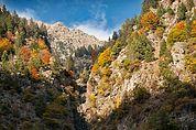 Herbst im Spronser Tal