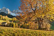 Herbst in Villnöß
