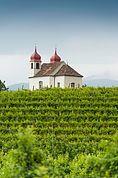 Die Gleifkirche in den Weinbergen bei Eppan