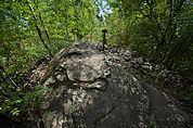 Schalenstein in Partschins