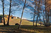 Der Obermiglerhof auf dem Ritten