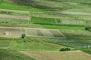 Felder und Äcker