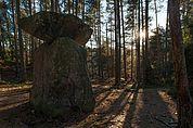 Der Menhir von Wolfsgruben