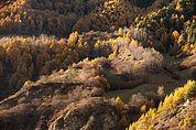Herbstlandschaft bei Tanas