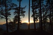 Wald-Sonnenuntergang