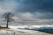 Foto-Landschaft Ritten