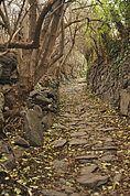 Weg zum Schloß Juval