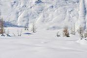 Winterlandschaft in Sulden