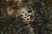 Schalenstein am Pinatzbühel
