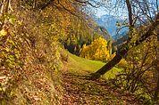 Blick nach Katharinaberg im Herbst