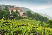 Landschaft um Burg Freudenstein bei Eppan